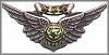 Combat AirCrew Wings